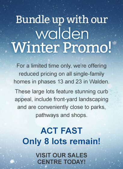 build-up-with-our-walden-winter-promo-walden-mobile_01