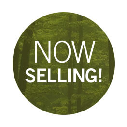 miller-crossing-nowselling