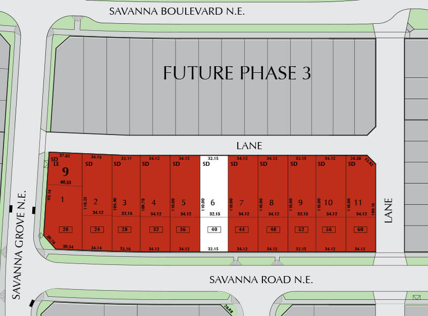 SAVANNA-Phase-1B