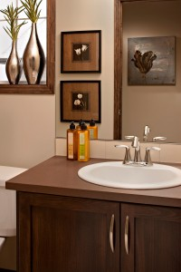 Bayview 3 - Urban Modern F3 Gallery - Bayview 3 Bath  - 2,139 sqft, 3 Bedroom, 2.5 Bathroom - Cardel Homes Calgary