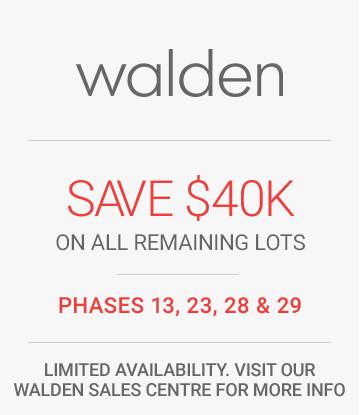 walden-single-front-promo_02