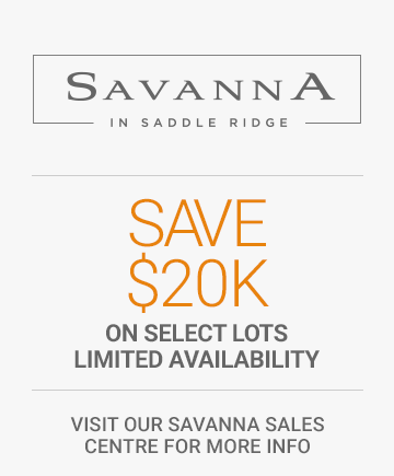 Save 20,000 dollars on selected lots in Savanna