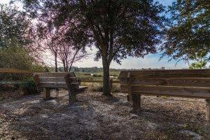 cardel homes tampa worthington community photos 19
